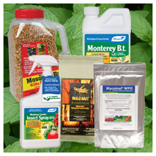 Organic Insecticides for Natural Pest Control for Lawns Gardens
