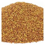 Commercial & Bulk Seeds