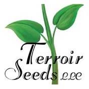 Terroir Seeds