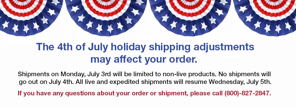 July Fourth Shipping Adjustment Disclaimer