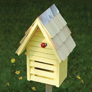 Ladybug Loft