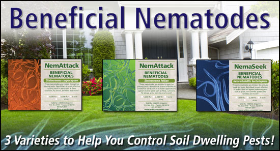 organic gardening supplies and biological pest control