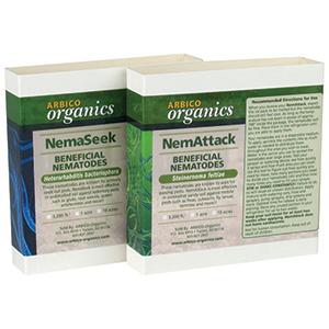 Nemaseek Hb Heterorhabditis Bacteriophora Beneficial