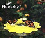 Flutterby™ Butterfly Feeder