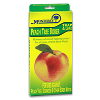 Monterey Peach Tree Borer Trap LG 8710