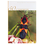 50 Common Insects of the Southwest by Carl Olson