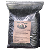 Biochar Pure