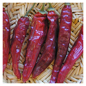 529751e1f288 NS S Chile Seeds - Pico de Pajaro