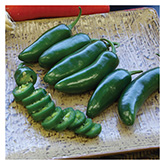 SERO Biodynamic® Seeds - Early Jalapeño Peppers