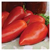 SERO Biodynamic® Seeds - Jersey Devil Tomato